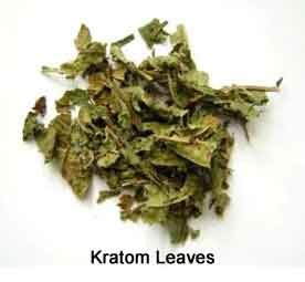 how to know what types of kratom to buy